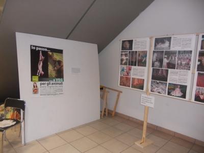 FA' LA COSA GIUSTA 2011 - MOSTRA ANIMALISTA 33