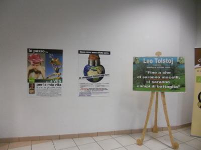 FA' LA COSA GIUSTA 2011 - MOSTRA ANIMALISTA 52
