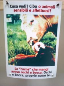 FA' LA COSA GIUSTA 2011 - MOSTRA ANIMALISTA 77