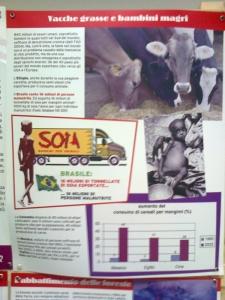 FA' LA COSA GIUSTA 2011 - MOSTRA ANIMALISTA 79