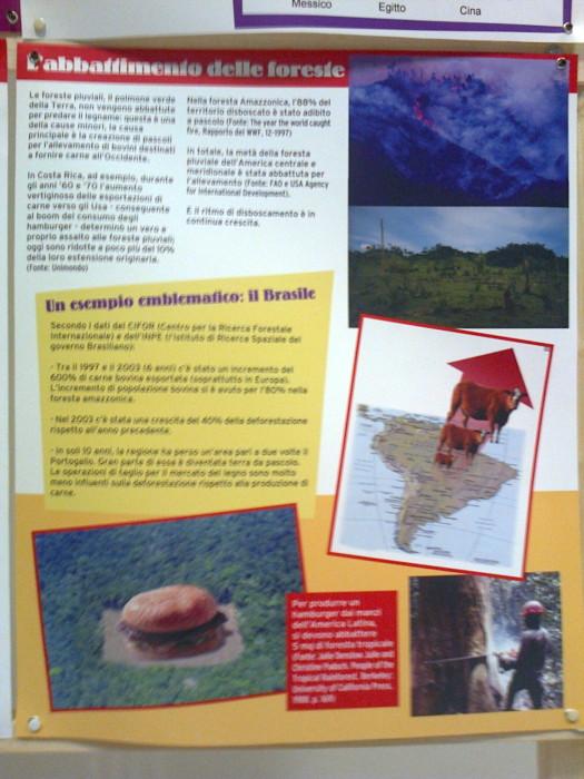 FA' LA COSA GIUSTA 2011 - MOSTRA ANIMALISTA 232