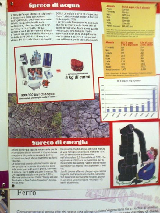 FA' LA COSA GIUSTA 2011 - MOSTRA ANIMALISTA 233
