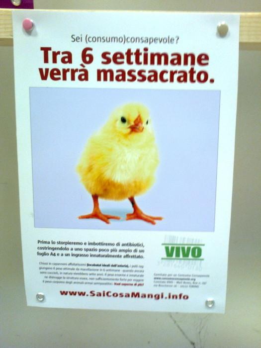 FA' LA COSA GIUSTA 2011 - MOSTRA ANIMALISTA 238