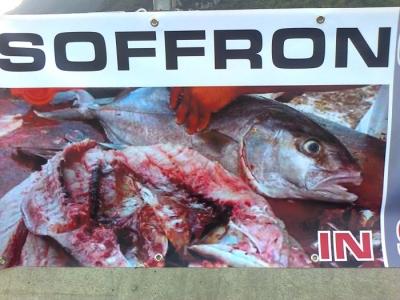Presidio alla Fiera Caccia e Pesca di Riva del Garda 31.03.2012 1