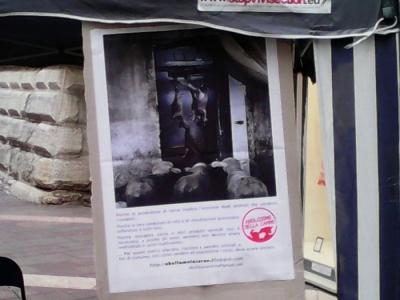 TAVOLO INFORMATIVO SULL'ABOLIZIONE DELLA CARNE 18