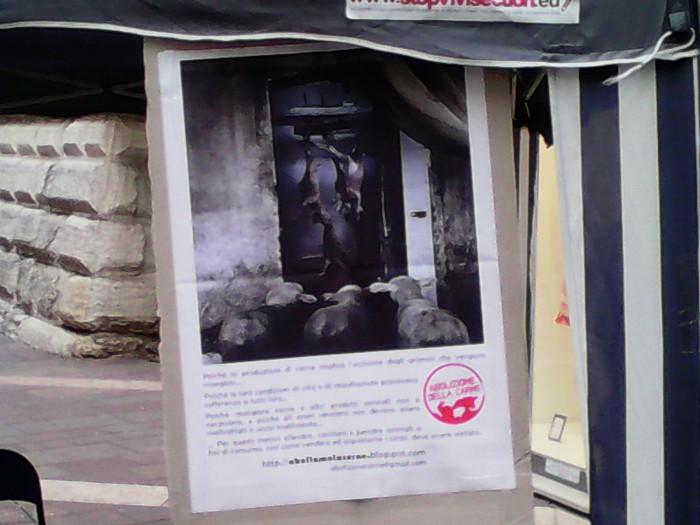 TAVOLO INFORMATIVO SULL'ABOLIZIONE DELLA CARNE 36