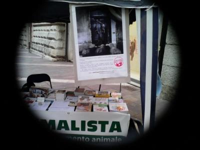 TAVOLO INFORMATIVO SULL'ABOLIZIONE DELLA CARNE 6