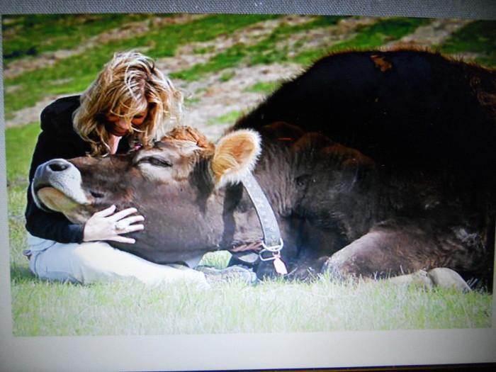 Cles 01.12.2012 - Pronti Partenza Vegan, corso rapido di cucina vegan con Aida Vittoria Eltain 50
