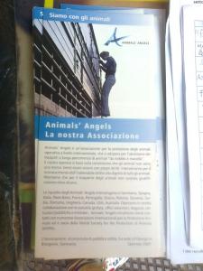 TRENTO 15.10.2011- TAVOLO INFORMATIVO PER LA SETTIMANA VEGETARIANA MONDIALE 17