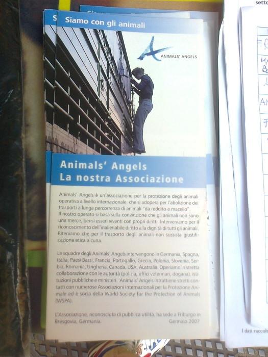 TRENTO 15.10.2011- TAVOLO INFORMATIVO PER LA SETTIMANA VEGETARIANA MONDIALE 55