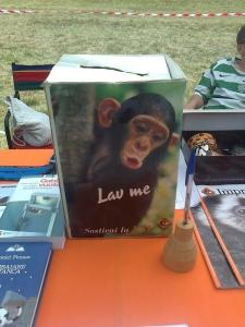FESTA DELLE ASSOCIAZIONI - LOC. 7 LARICI - COREDO (TN) - 31.07.2011 56