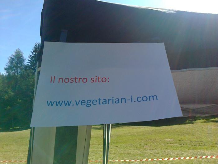 FESTA DELLE ASSOCIAZIONI - LOC. 7 LARICI - COREDO (TN) - 31.07.2011 232