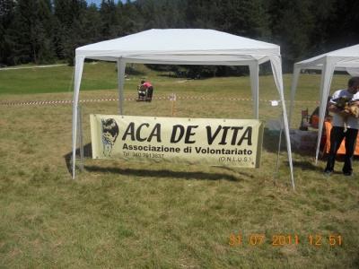 FESTA DELLE ASSOCIAZIONI - LOC. 7 LARICI - COREDO (TN) - 31.07.2011 100
