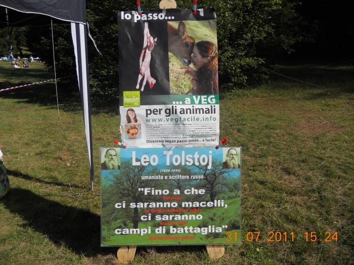 FESTA DELLE ASSOCIAZIONI - LOC. 7 LARICI - COREDO (TN) - 31.07.2011 276