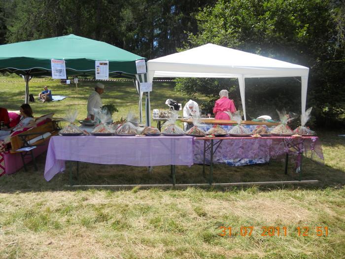 FESTA DELLE ASSOCIAZIONI - LOC. 7 LARICI - COREDO (TN) - 31.07.2011 277