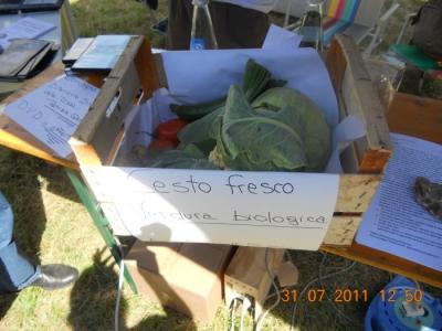 FESTA DELLE ASSOCIAZIONI - LOC. 7 LARICI - COREDO (TN) - 31.07.2011 146