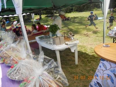 FESTA DELLE ASSOCIAZIONI - LOC. 7 LARICI - COREDO (TN) - 31.07.2011 2