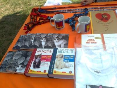 FESTA DELLE ASSOCIAZIONI - LOC. 7 LARICI - COREDO (TN) - 31.07.2011 21