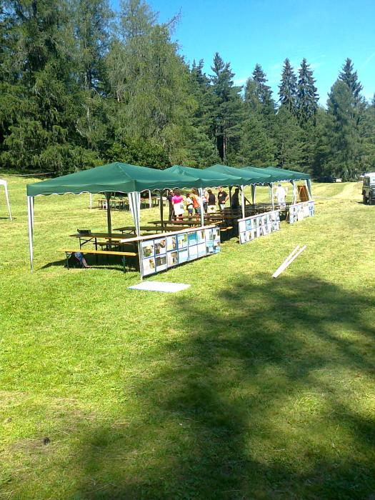 FESTA DELLE ASSOCIAZIONI - LOC. 7 LARICI - COREDO (TN) - 31.07.2011 168