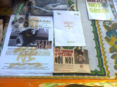 FESTA DELLE ASSOCIAZIONI - LOC. 7 LARICI - COREDO (TN) - 31.07.2011 31
