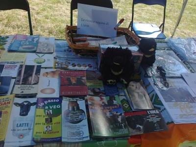 FESTA DELLE ASSOCIAZIONI - LOC. 7 LARICI - COREDO (TN) - 31.07.2011 41