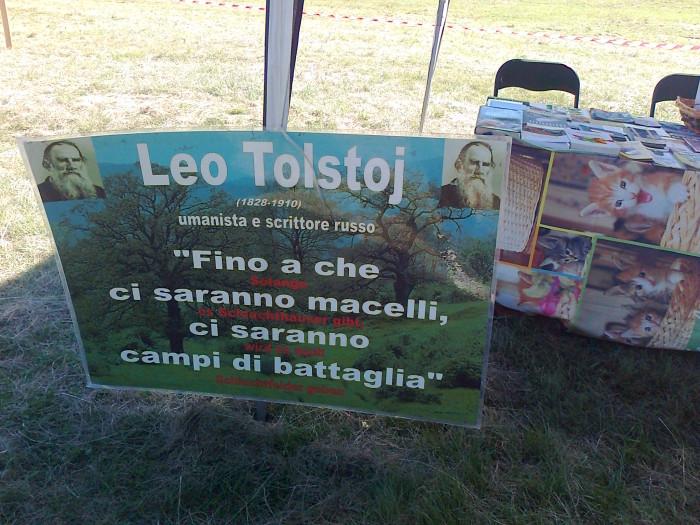 FESTA DELLE ASSOCIAZIONI - LOC. 7 LARICI - COREDO (TN) - 31.07.2011 188