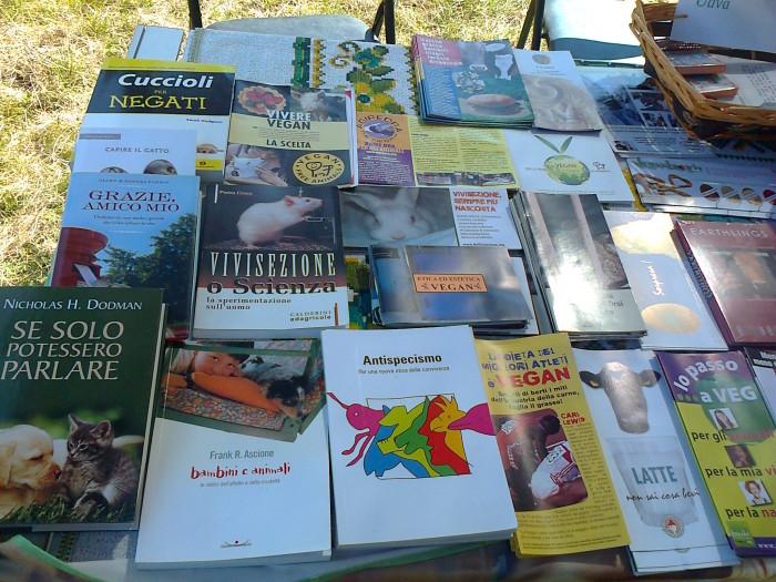 FESTA DELLE ASSOCIAZIONI - LOC. 7 LARICI - COREDO (TN) - 31.07.2011 194