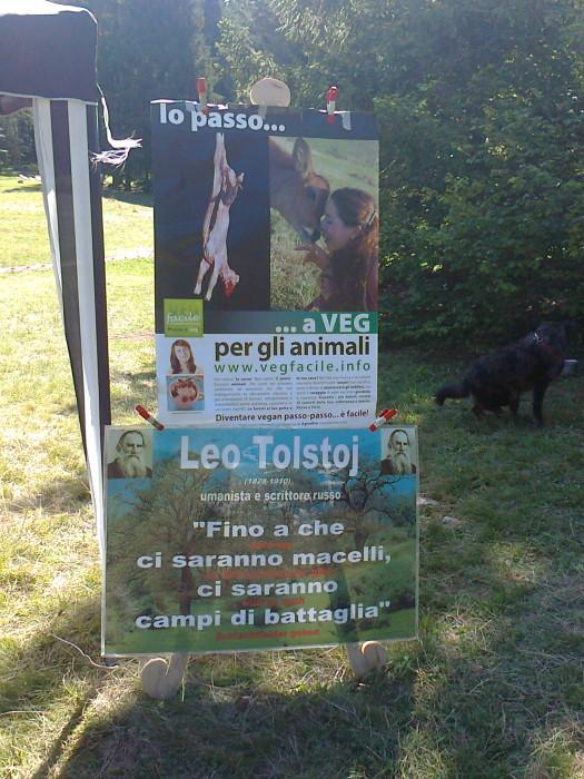 FESTA DELLE ASSOCIAZIONI - LOC. 7 LARICI - COREDO (TN) - 31.07.2011 197