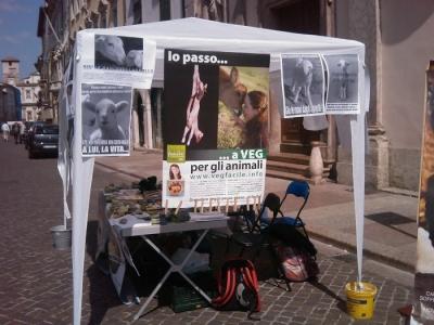 16 aprile 2011 - TAVOLO INFORMATIVO SU MASSACRO AGNELLI E CAPRETTI PERIODO PASQUALE 24