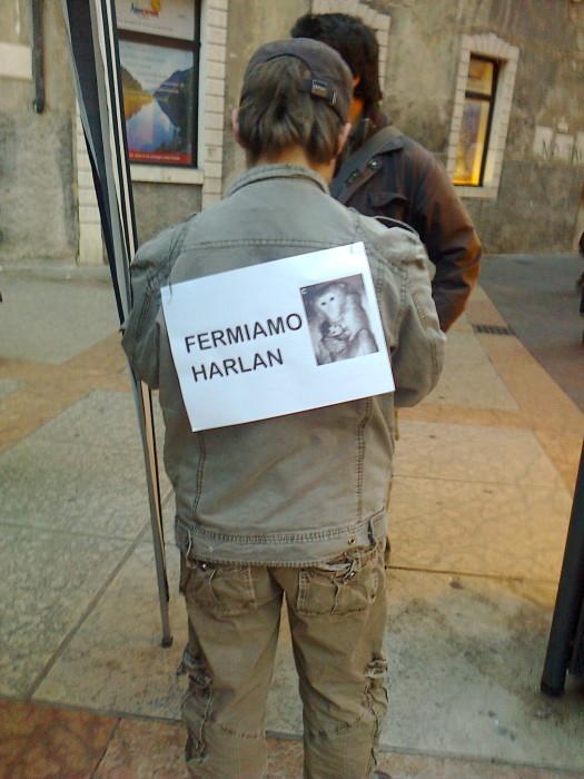 TRENTO - 03.03.2012 - TAVOLO INFORMATIVO SUGLI ORRORI DELLA VIVISEZIONE 170