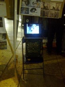 TRENTO - 03.03.2012 - TAVOLO INFORMATIVO SUGLI ORRORI DELLA VIVISEZIONE 9