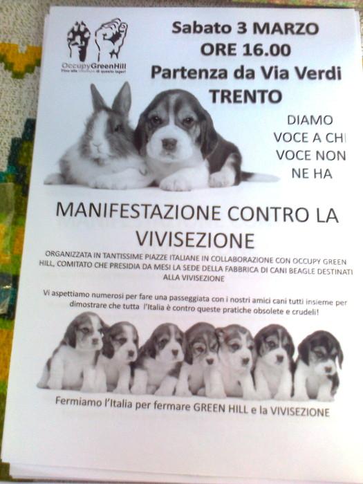 TRENTO - 03.03.2012 - TAVOLO INFORMATIVO SUGLI ORRORI DELLA VIVISEZIONE 101