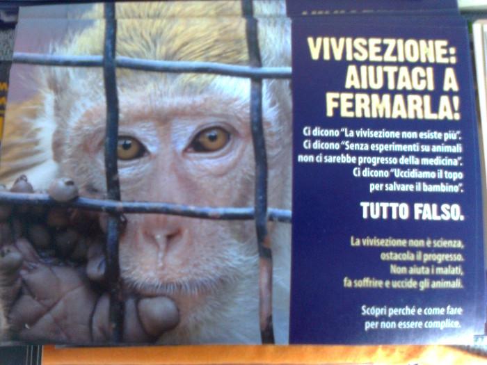 TRENTO - 03.03.2012 - TAVOLO INFORMATIVO SUGLI ORRORI DELLA VIVISEZIONE 118