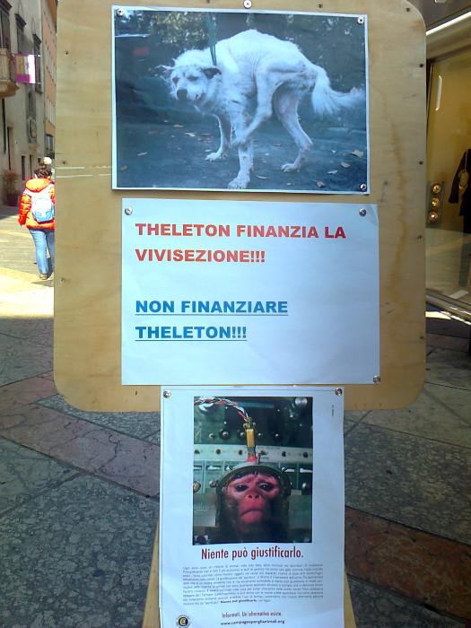 TRENTO - 03.03.2012 - TAVOLO INFORMATIVO SUGLI ORRORI DELLA VIVISEZIONE 123