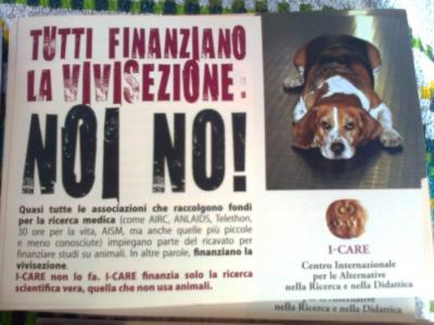 TRENTO - 03.03.2012 - TAVOLO INFORMATIVO SUGLI ORRORI DELLA VIVISEZIONE 34
