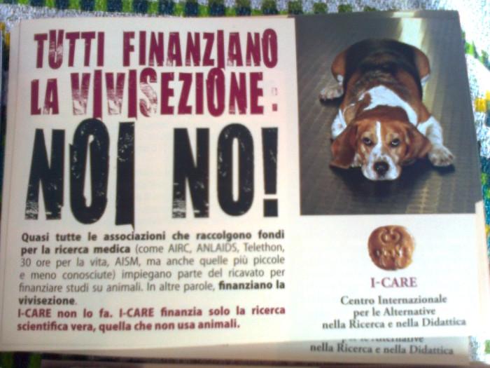TRENTO - 03.03.2012 - TAVOLO INFORMATIVO SUGLI ORRORI DELLA VIVISEZIONE 124