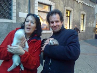 TRENTO - 03.03.2012 - TAVOLO INFORMATIVO SUGLI ORRORI DELLA VIVISEZIONE 52
