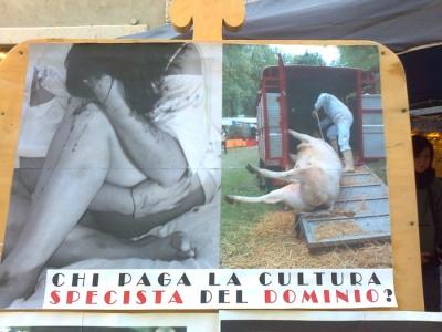 TRENTO 14.01.12 - TAVOLO INFORMATIVO SULL'ANTISPECISMO E LA CULTURA DEL DOMINIO 3