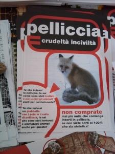 TAVOLO INFORMATIVO SULLE PELLICCE - TRENTO 26.02.2011 9