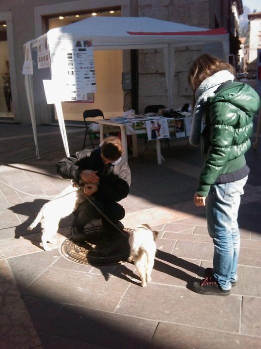 TAVOLO INFORMATIVO SULLE PELLICCE - TRENTO 26.02.2011 35