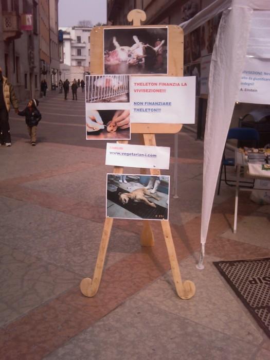 TRENTO - 12.03.2011 - TAVOLO INFORMATIVO SULLA VIVISEZIONE 114