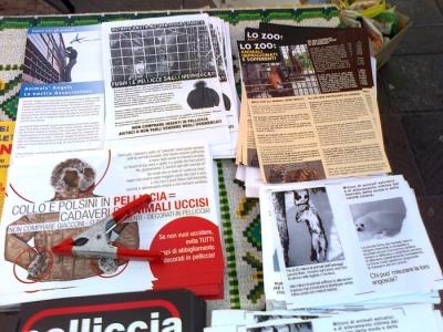 TRENTO - TAVOLO INFORMATIVO CONTRO IL COMMERCIO DI PELLICCE E PIUMINI D'OCA 41