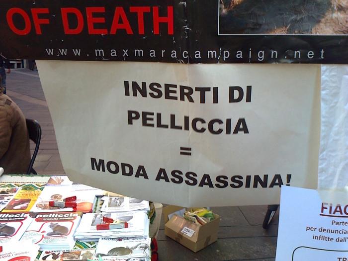 TRENTO - TAVOLO INFORMATIVO CONTRO IL COMMERCIO DI PELLICCE E PIUMINI D'OCA 117