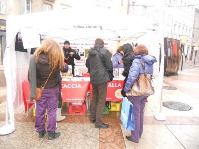 03 dicembre 2011 Trento fiaccolata per denunciare lo sterminio degli animali nel periodo natalizio (e non solo!) 99