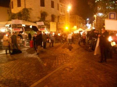03 dicembre 2011 Trento fiaccolata per denunciare lo sterminio degli animali nel periodo natalizio (e non solo!) 110