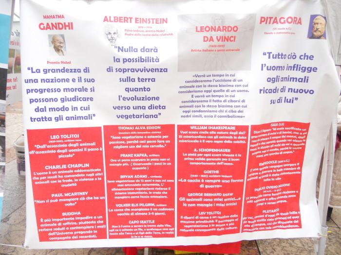 03 dicembre 2011 Trento fiaccolata per denunciare lo sterminio degli animali nel periodo natalizio (e non solo!) 301