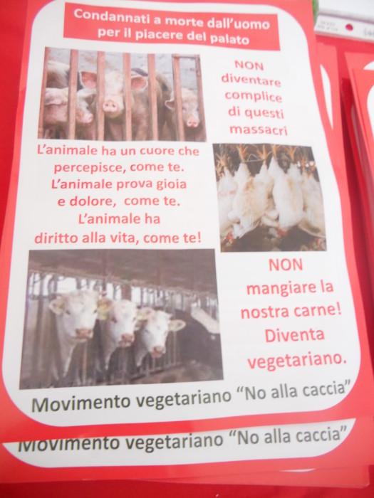 03 dicembre 2011 Trento fiaccolata per denunciare lo sterminio degli animali nel periodo natalizio (e non solo!) 303