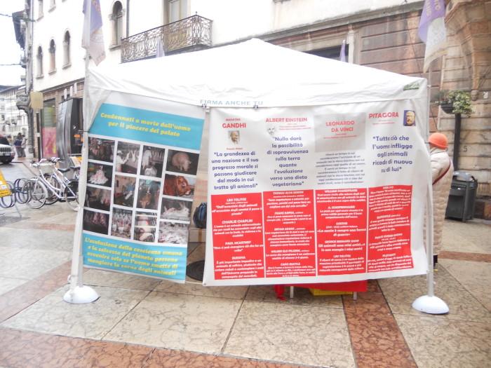 03 dicembre 2011 Trento fiaccolata per denunciare lo sterminio degli animali nel periodo natalizio (e non solo!) 307