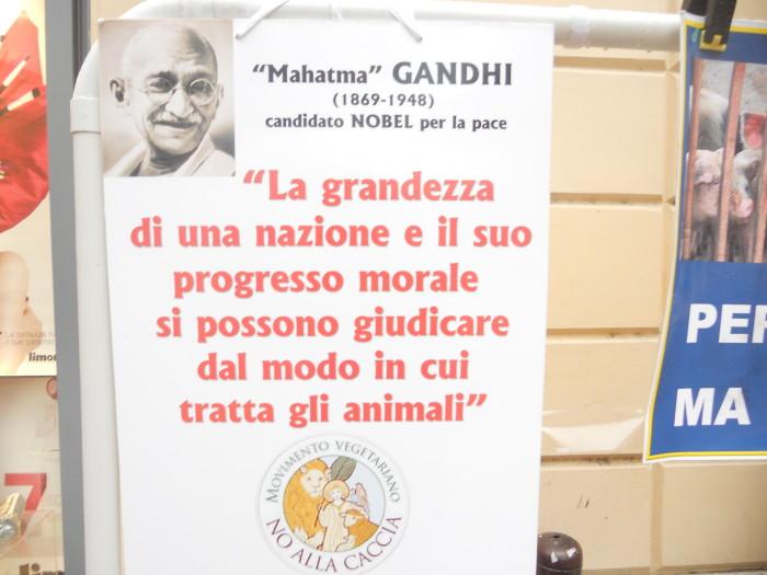 03 dicembre 2011 Trento fiaccolata per denunciare lo sterminio degli animali nel periodo natalizio (e non solo!) 311