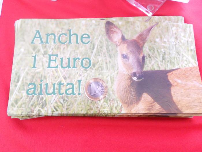 03 dicembre 2011 Trento fiaccolata per denunciare lo sterminio degli animali nel periodo natalizio (e non solo!) 316